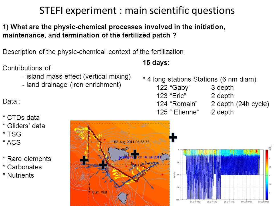 STEFI experiment : main scientific questions 1) What are the physic-chemical processes involved in the initiation, maintenance, and termination of the fertilized patch .