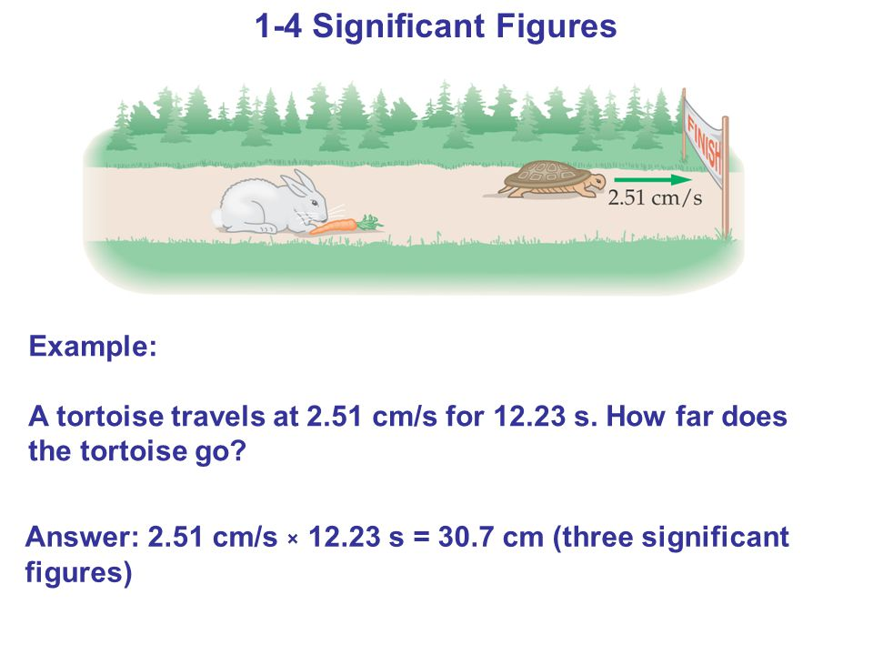 Example: A tortoise travels at 2.51 cm/s for 12.23 s.