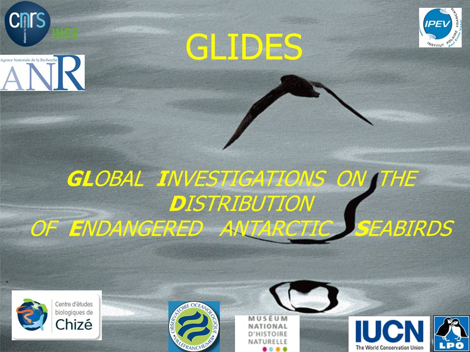 GLIDES GLOBAL INVESTIGATIONS ON THE DISTRIBUTION OF ENDANGERED ANTARCTIC SEABIRDS