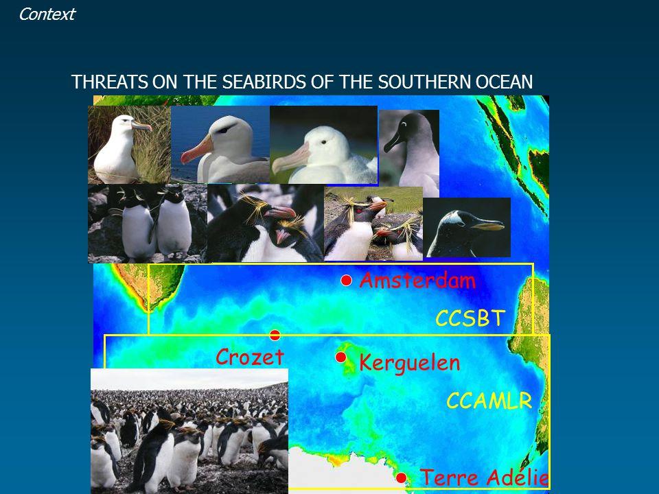 Amsterdam Crozet Kerguelen Terre Adélie IOTC CCAMLR CCSBT THREATS ON THE SEABIRDS OF THE SOUTHERN OCEAN Context