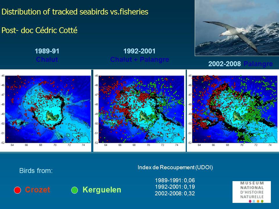 Birds from: CrozetKerguelen 1989-91 Chalut 1992-2001 Chalut + Palangre 2002-2008 Palangre Index de Recoupement (UDOI) 1989-1991: 0,06 1992-2001: 0,19