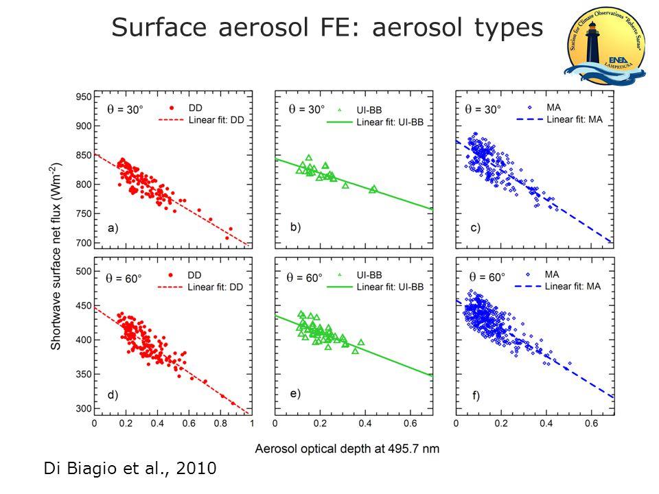Surface aerosol FE: aerosol types 2004-2007 Di Biagio et al., J.