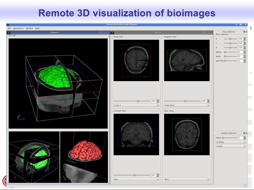  Copyright NICE srl, 2007 5 Remote 3D visualization of bioimages
