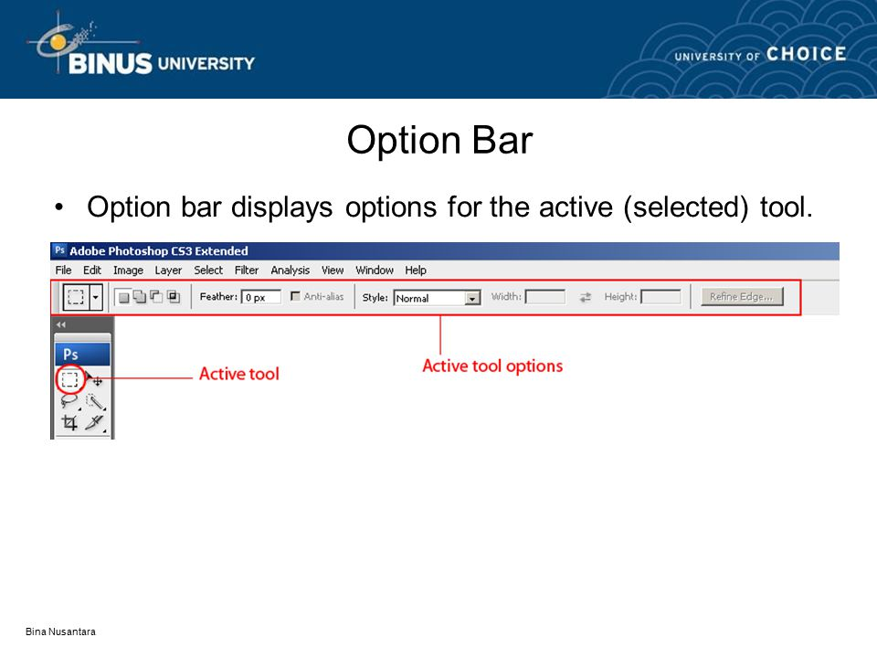 Bina Nusantara Option Bar Option bar displays options for the active (selected) tool.
