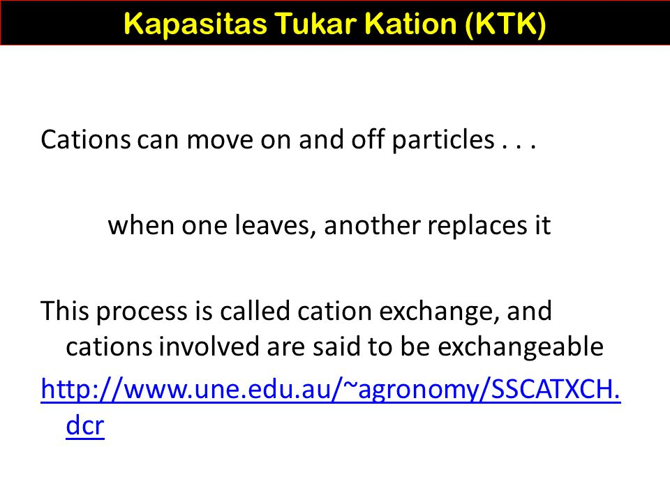 Law of Mass the more of one ion available, the greater the chance of adsorption Kapasitas Tukar Kation (KTK) http://www2.mcdaniel.edu/Biology/botf99/nutrition/soils.htm