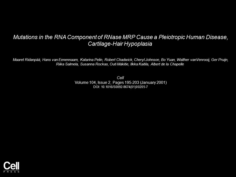 Mutations in the RNA Component of RNase MRP Cause a Pleiotropic Human Disease, Cartilage-Hair Hypoplasia Maaret Ridanpää, Hans van Eenennaam, Katarina Pelin, Robert Chadwick, Cheryl Johnson, Bo Yuan, Walther vanVenrooij, Ger Pruijn, Riika Salmela, Susanna Rockas, Outi Mäkitie, Ilkka Kaitila, Albert de la Chapelle Cell Volume 104, Issue 2, Pages 195-203 (January 2001) DOI: 10.1016/S0092-8674(01)00205-7