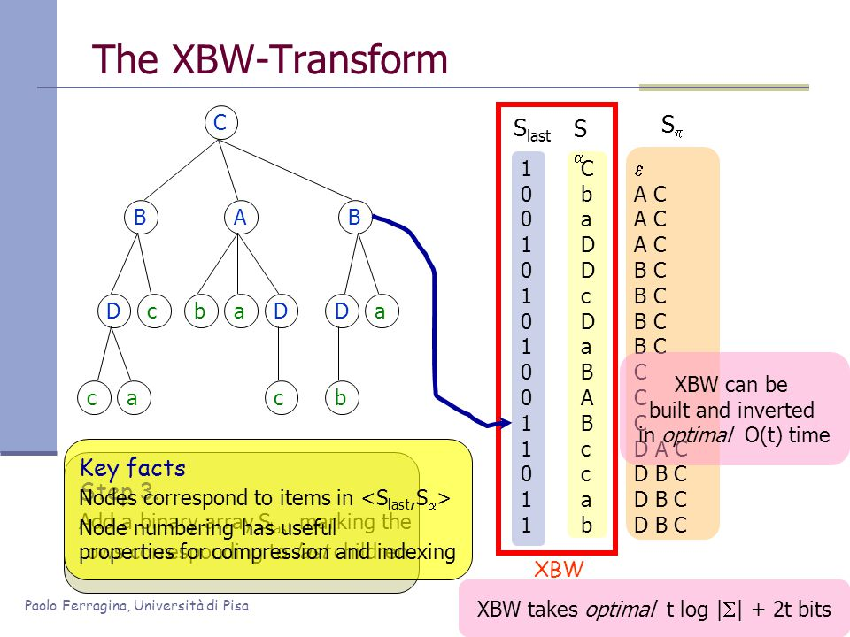 Paolo Ferragina, Università di Pisa XBW takes optimal t log |  | + 2t bits 100101010011011100101010011011 The XBW-Transform C BAB Dc ca baD c Da b CbaDDcDaBABccabCbaDDcDaBABccab SS  A C B C C D A C D B C SS Step 3.