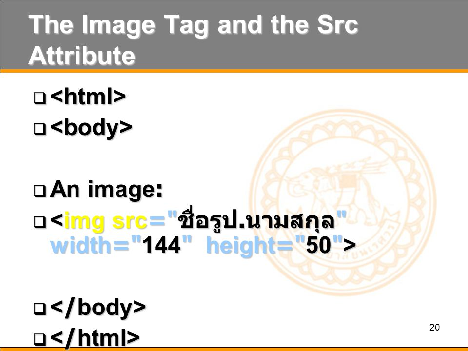 20 The Image Tag and the Src Attribute    An image:  