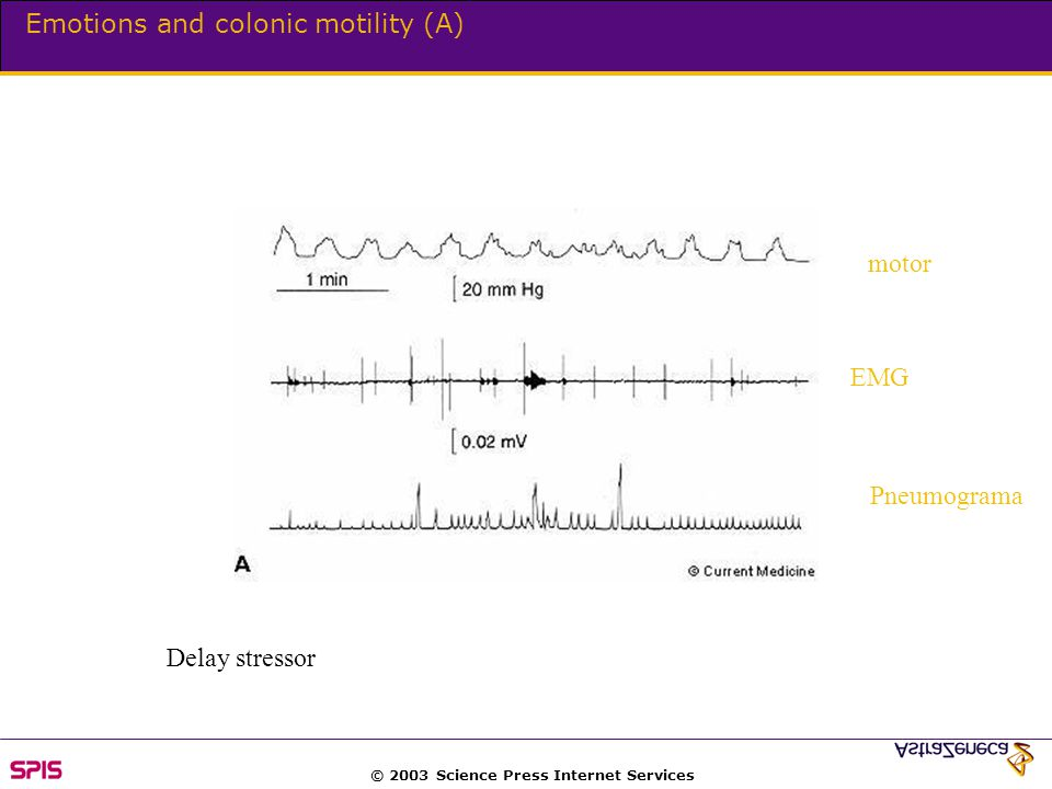 © 2003 Science Press Internet Services Emotions and colonic motility (A) Delay stressor motor EMG Pneumograma
