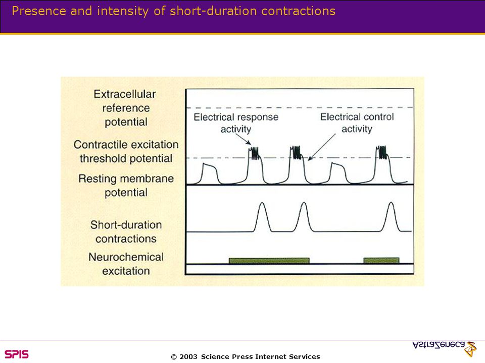 © 2003 Science Press Internet Services Presence and intensity of short-duration contractions