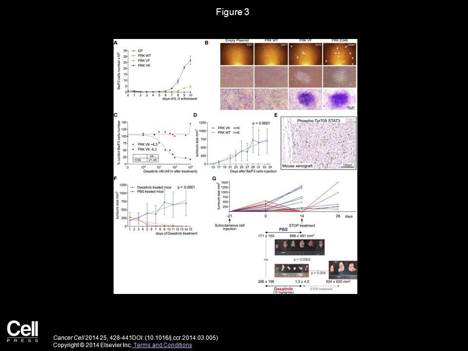 Figure 4 Cancer Cell 2014 25, 428-441DOI: (10.1016/j.ccr.2014.03.005) Copyright © 2014 Elsevier Inc.