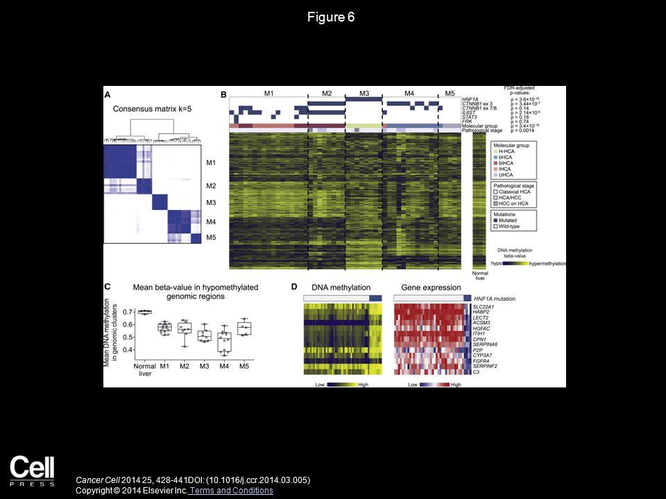 Figure 7 Cancer Cell 2014 25, 428-441DOI: (10.1016/j.ccr.2014.03.005) Copyright © 2014 Elsevier Inc.