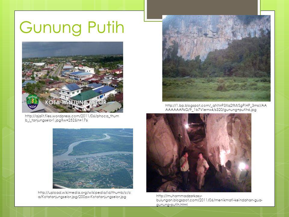 Gunung Putih http://ajalit.files.wordpress.com/2011/06/phoca_thum b_l_tanjungselor1.jpg w=252&h=176 http://muhammadzarkasy- bulungan.blogspot.com/2011/06/menikmati-keindahan-gua- gunung-putih.html http://1.bp.blogspot.com/_qNNrP3Xq2fM/SgPiHP_3msI/AA AAAAAAFkQ/9_1b7VIemx4/s320/gunung+putih6.jpg http://upload.wikimedia.org/wikipedia/id/thumb/c/c a/Kotatanjungselor.jpg/200px-Kotatanjungselor.jpg