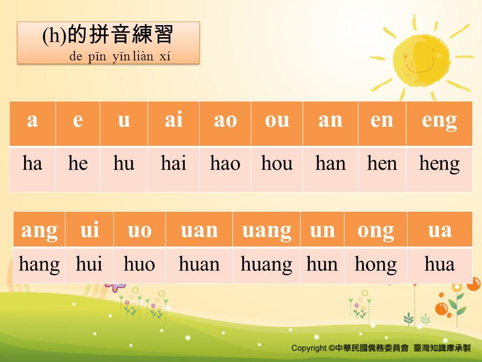 (h) 的拼音練習 de pīn yīn liàn xí (h) 的拼音練習 de pīn yīn liàn xí aeuaiaoouaneneng hahehuhaihaohouhanhenheng anguiuouanuangunongua hanghuihuohuanhuanghunhonghua