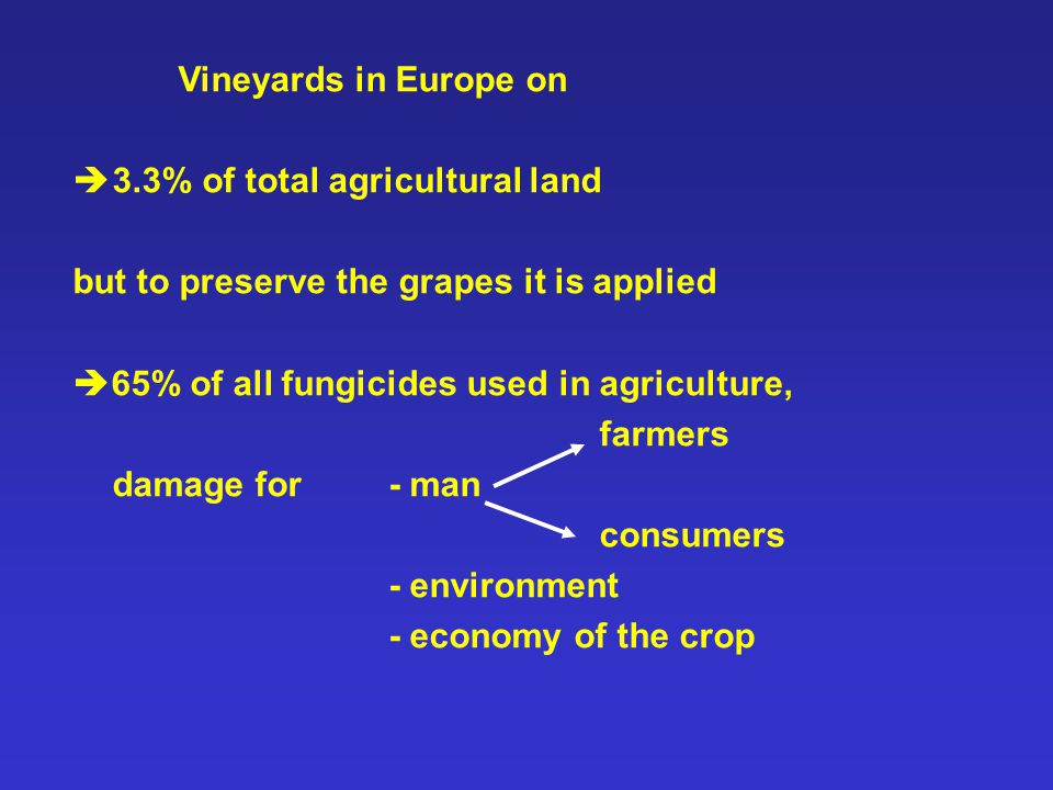 Vineyards in Europe on  3.3% of total agricultural land but to preserve the grapes it is applied  65% of all fungicides used in agriculture, farmers damage for - man consumers - environment - economy of the crop