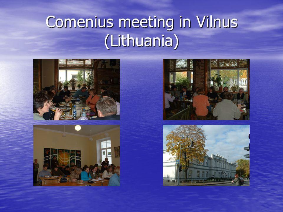 Comenius meeting in Vilnus (Lithuania)