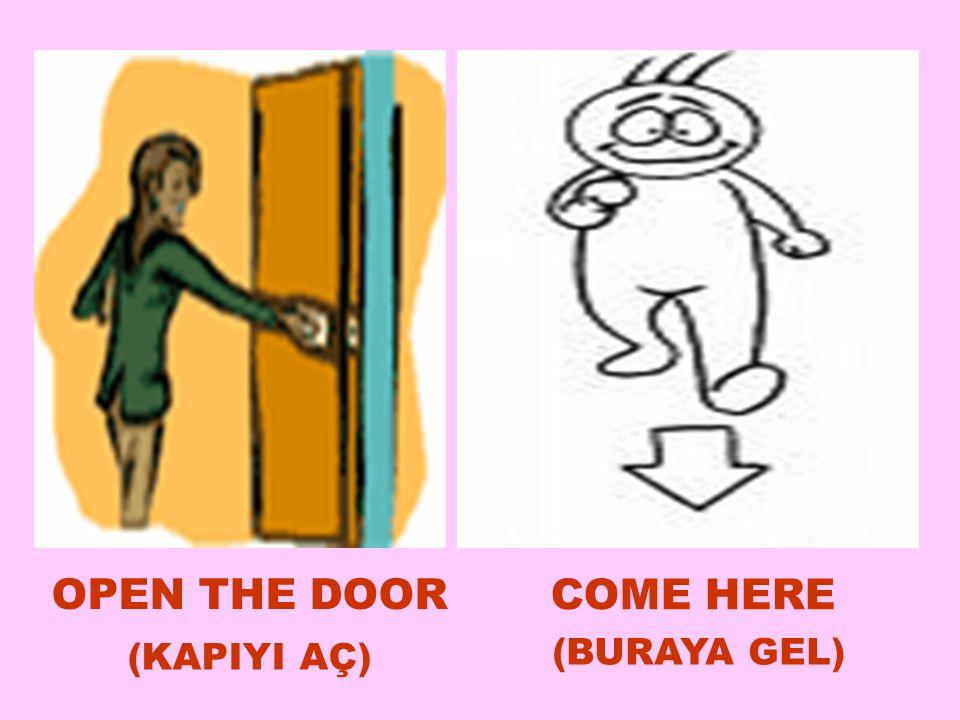 OPEN THE DOOR COME HERE (KAPIYI AÇ)  (BURAYA GEL) 