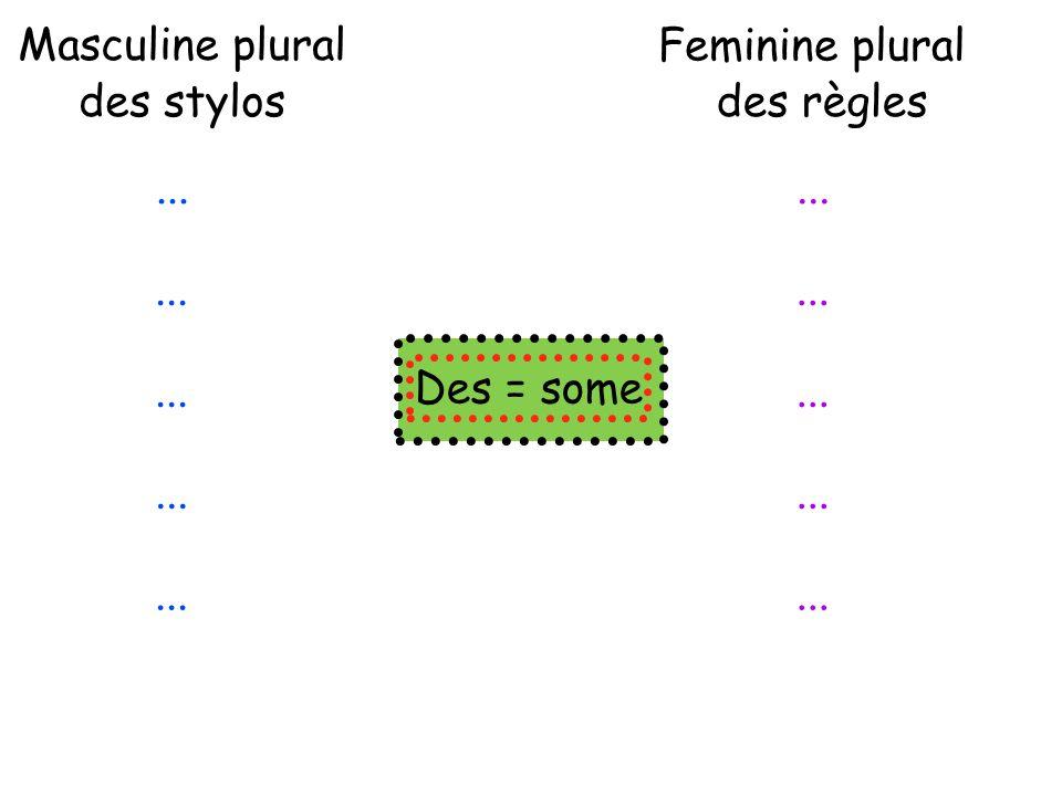 ... Masculine plural des stylos Feminine plural des règles... Des = some