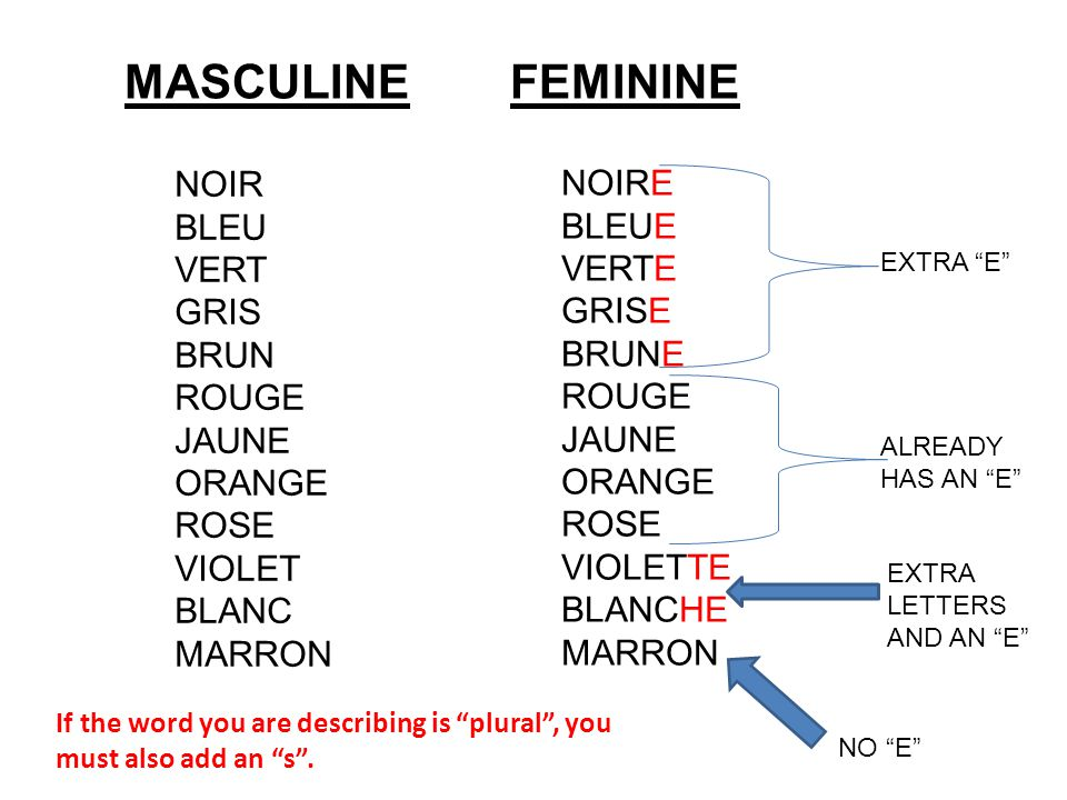 MASCULINE FEMININE NOIR BLEU VERT GRIS BRUN ROUGE JAUNE ORANGE ROSE VIOLET BLANC MARRON NOIRE BLEUE VERTE GRISE BRUNE ROUGE JAUNE ORANGE ROSE VIOLETTE BLANCHE MARRON EXTRA E ALREADY HAS AN E NO E EXTRA LETTERS AND AN E If the word you are describing is plural , you must also add an s .