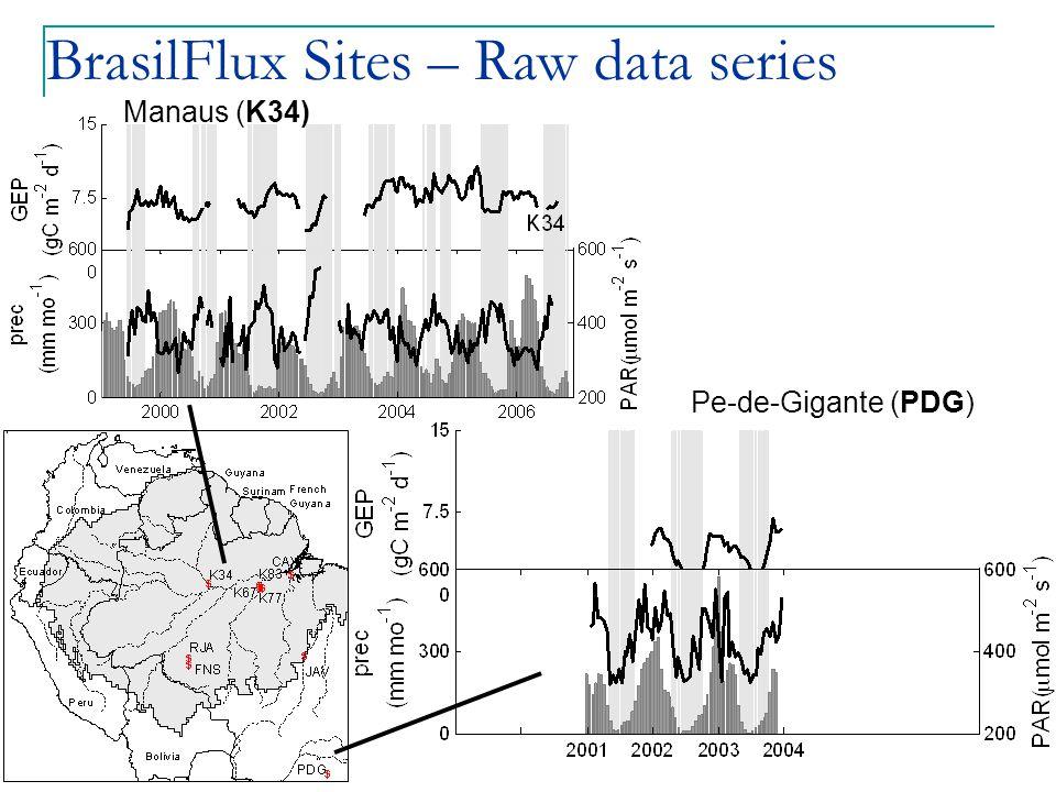 BrasilFlux Sites – Raw data series Pe-de-Gigante (PDG) Manaus (K34)