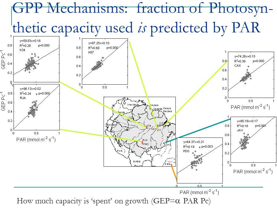 How much capacity is 'spent' on growth (GEP=  PAR Pc) GPP Mechanisms: fraction of Photosyn- thetic capacity used is predicted by PAR