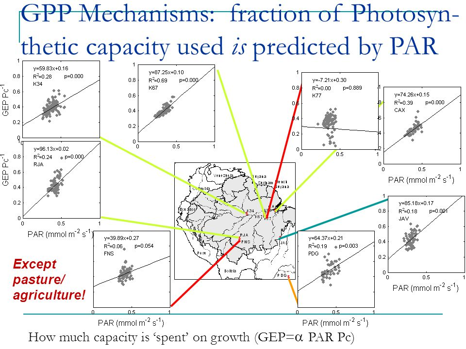 How much capacity is 'spent' on growth (GEP=  PAR Pc) GPP Mechanisms: fraction of Photosyn- thetic capacity used is predicted by PAR Except pasture/ agriculture!