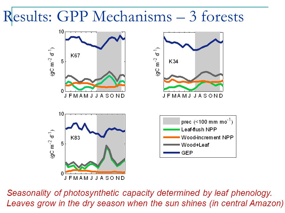 Results: GPP Mechanisms – 3 forests Seasonality of photosynthetic capacity determined by leaf phenology.