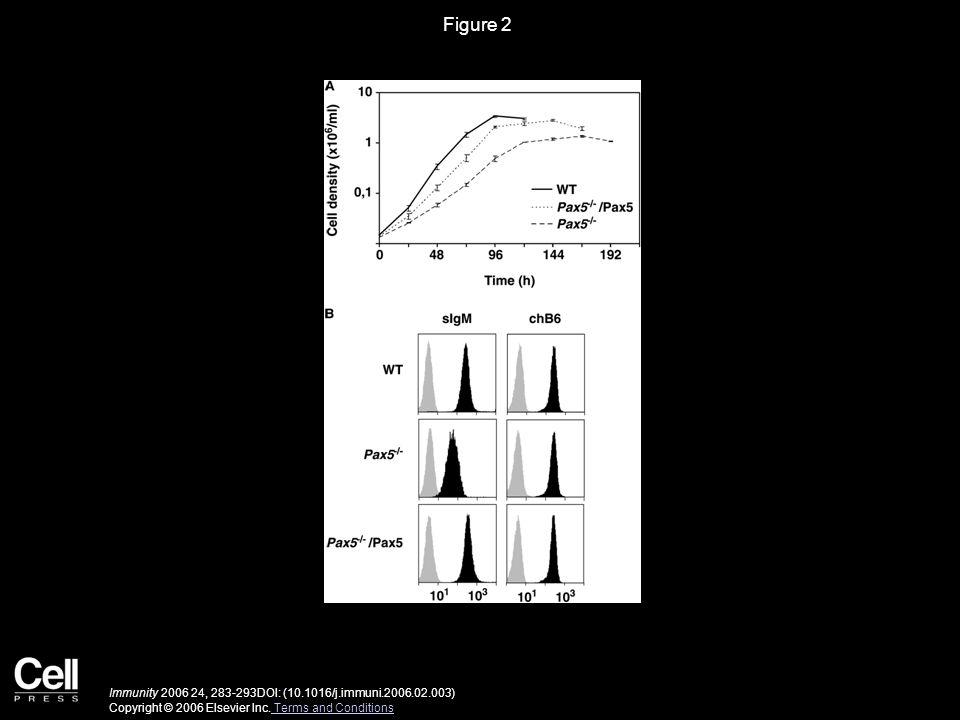 Figure 2 Immunity 2006 24, 283-293DOI: (10.1016/j.immuni.2006.02.003) Copyright © 2006 Elsevier Inc. Terms and Conditions Terms and Conditions