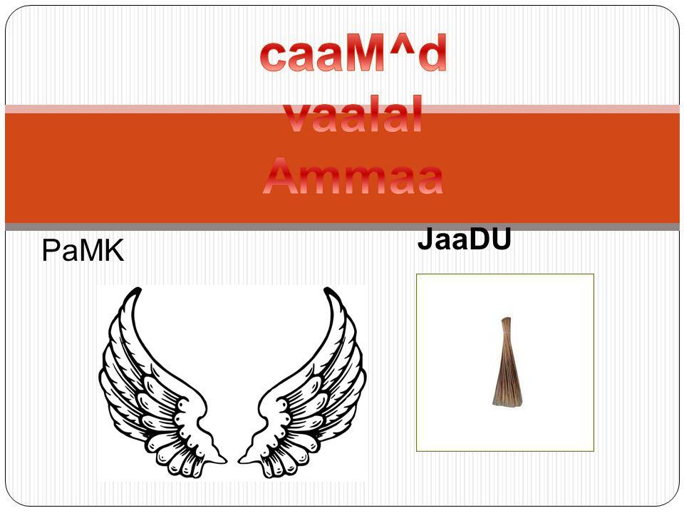 JaaDU PaMK