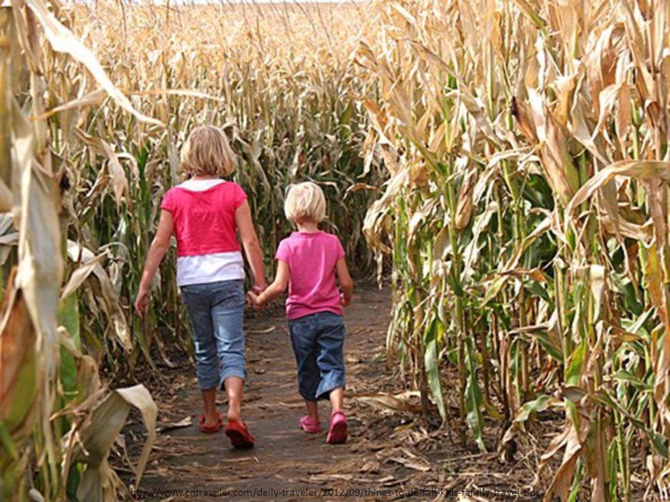 http://www.cntraveler.com/daily-traveler/2012/09/things-to-do-fall-kids-family-travel-tips