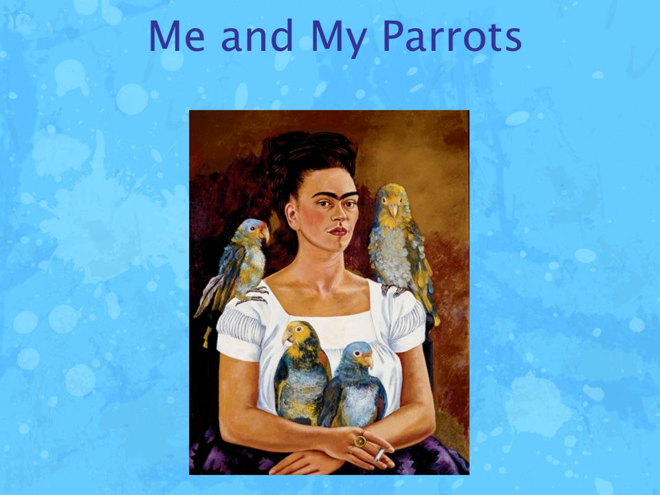 Me and My Parrots