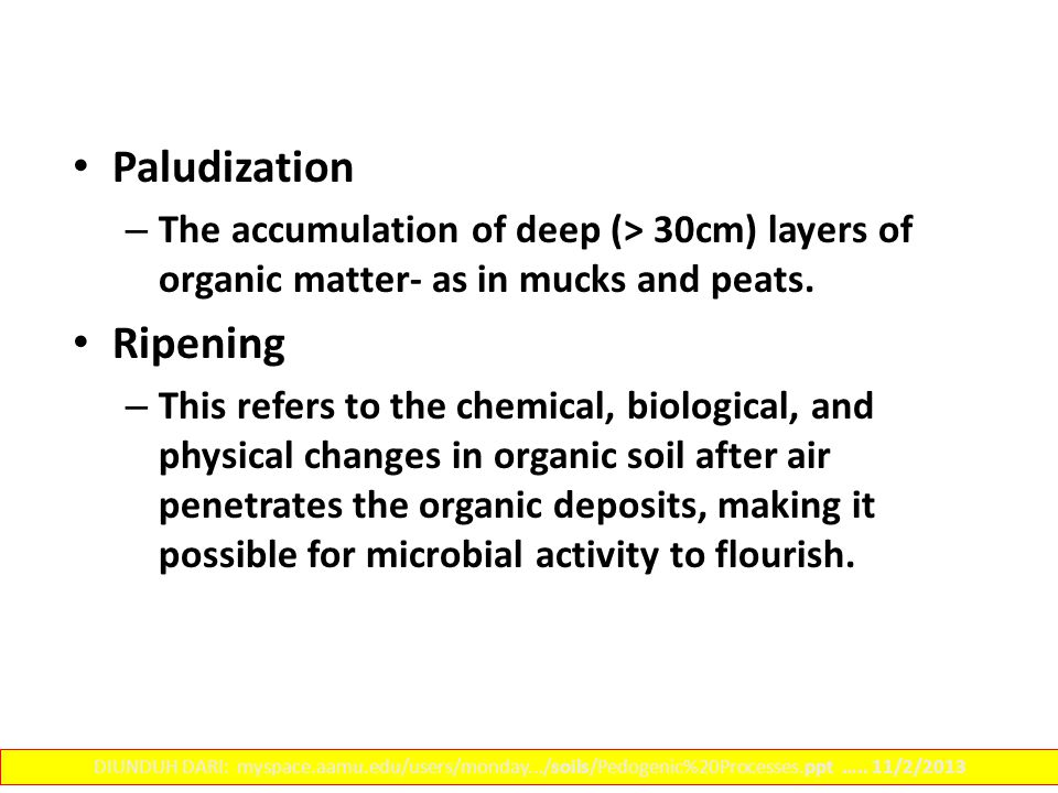 Paludization – The accumulation of deep (> 30cm) layers of organic matter- as in mucks and peats.