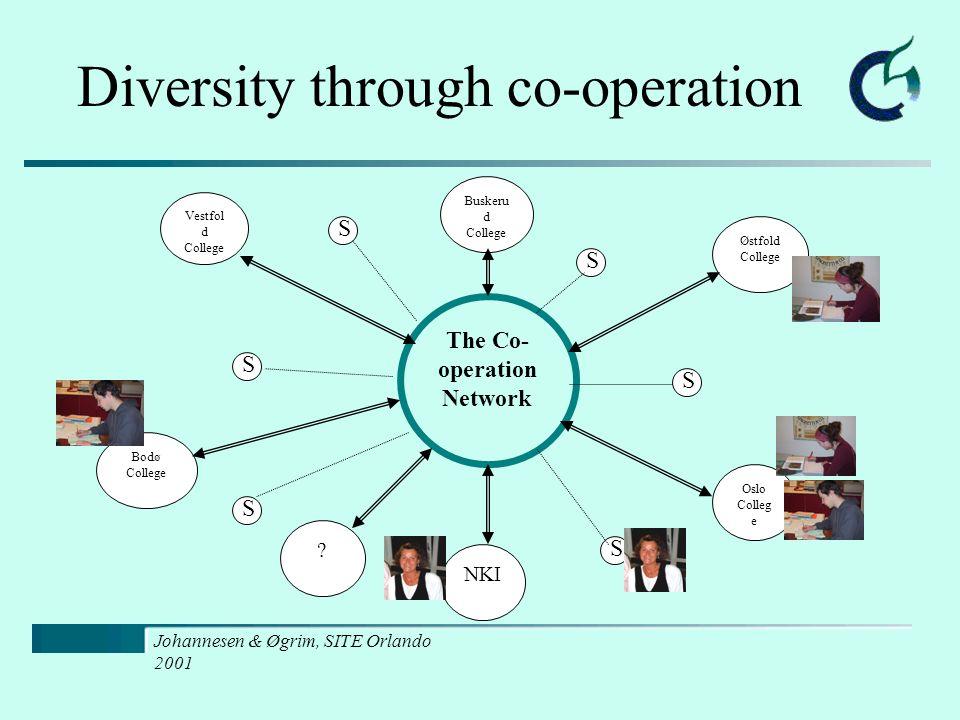 Johannesen & Øgrim, SITE Orlando 2001 Vestfol d College Diversity through co-operation The Co- operation Network Østfold College Oslo Colleg e NKI Bodø College Buskeru d College .