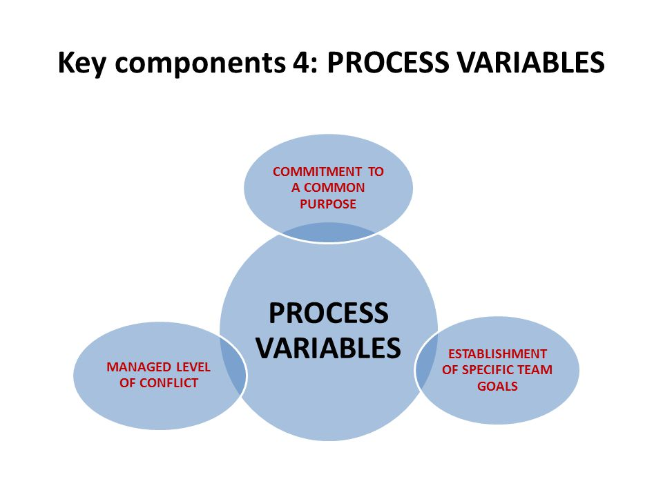 Key components 4: PROCESS VARIABLES PROCESS VARIABLES COMMITMENT TO A COMMON PURPOSE ESTABLISHMENT OF SPECIFIC TEAM GOALS MANAGED LEVEL OF CONFLICT