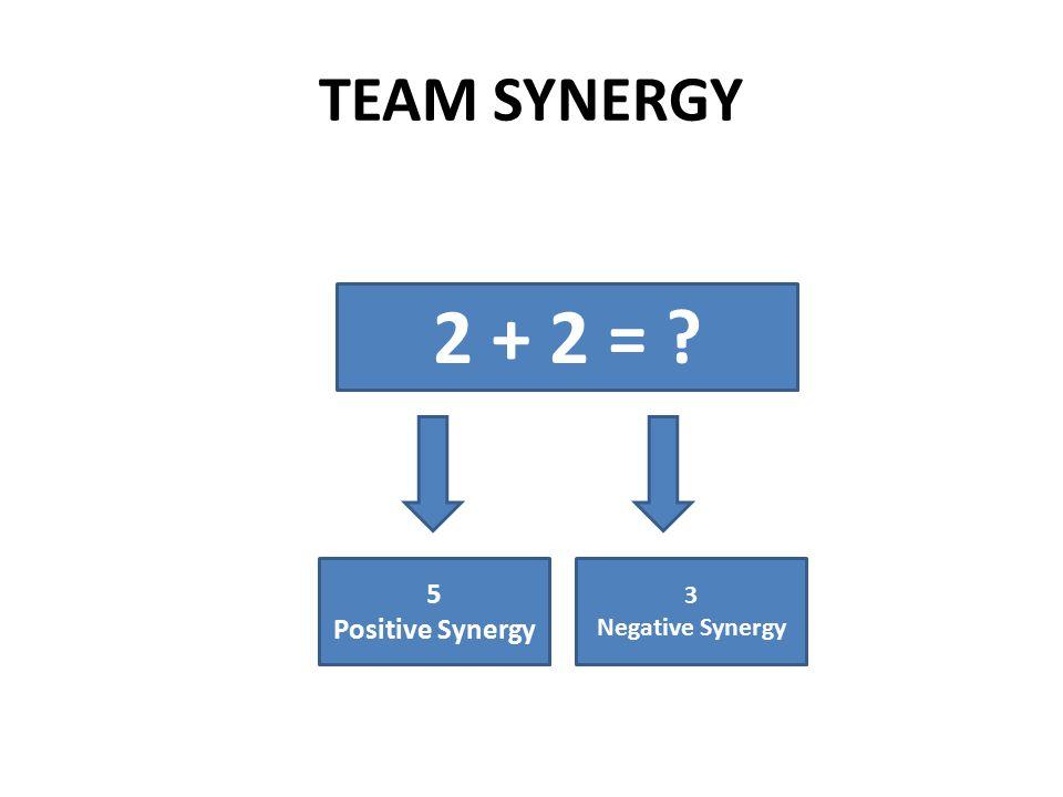 TEAM SYNERGY 2 + 2 = 5 Positive Synergy 3 Negative Synergy