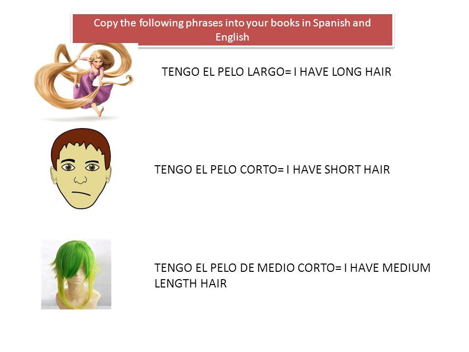 Copy the following phrases into your books in Spanish and English TENGO EL PELO LARGO= I HAVE LONG HAIR TENGO EL PELO CORTO= I HAVE SHORT HAIR TENGO E