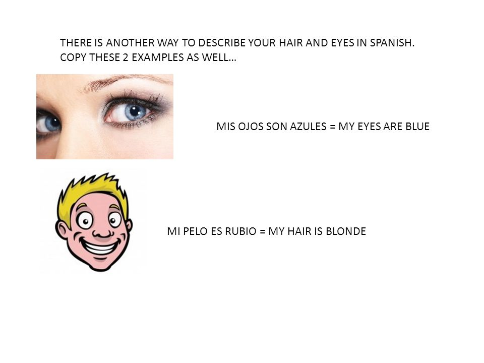 THERE IS ANOTHER WAY TO DESCRIBE YOUR HAIR AND EYES IN SPANISH. COPY THESE 2 EXAMPLES AS WELL… MIS OJOS SON AZULES = MY EYES ARE BLUE MI PELO ES RUBIO