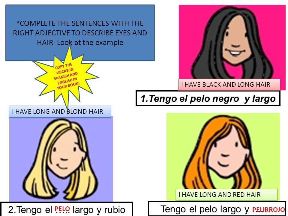 1.Tengo el pelo negro y largo 2.Tengo el ….. largo y rubio Tengo el pelo largo y ……. PELO PELIRROJO I HAVE BLACK AND LONG HAIR I HAVE LONG AND BLOND H