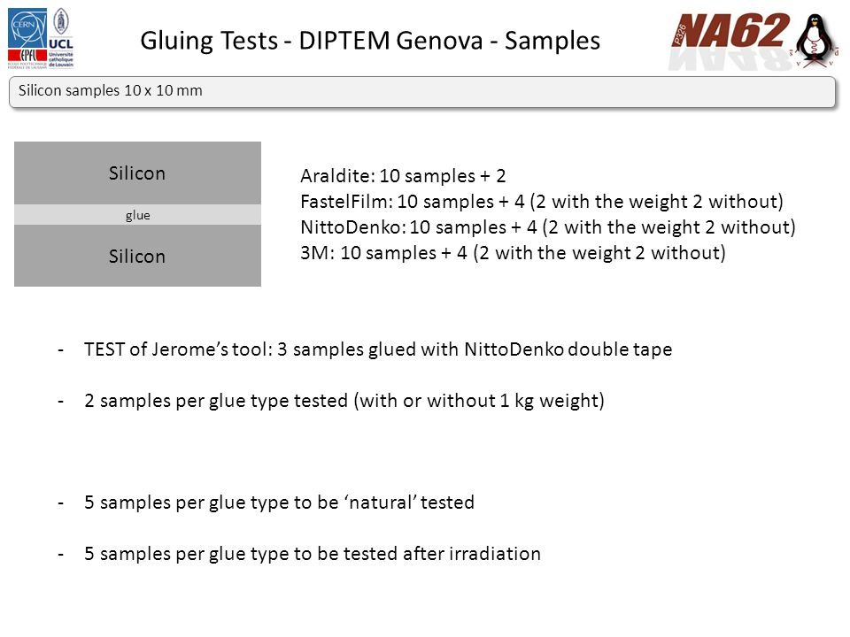 Gluing Tests - DIPTEM Genova - Machine Top clamp Bottom clamp INSTRON 8802 – Floor Model Fatigue Testing Systems up to 500 kN