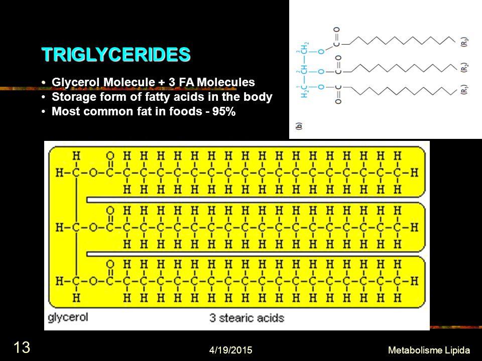 TRIGLYCERIDESTRIGLYCERIDES Glycerol Molecule + 3 FA Molecules Glycerol Molecule + 3 FA Molecules Storage form of fatty acids in the body Storage form of fatty acids in the body Most common fat in foods - 95% Most common fat in foods - 95% Glycerol Molecule + 3 FA Molecules Glycerol Molecule + 3 FA Molecules Storage form of fatty acids in the body Storage form of fatty acids in the body Most common fat in foods - 95% Most common fat in foods - 95% 4/19/2015 13 Metabolisme Lipida