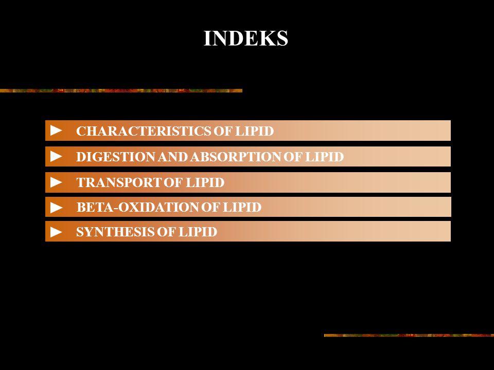 INDEKS CHARACTERISTICS OF LIPID DIGESTION AND ABSORPTION OF LIPID TRANSPORT OF LIPID BETA-OXIDATION OF LIPID SYNTHESIS OF LIPID