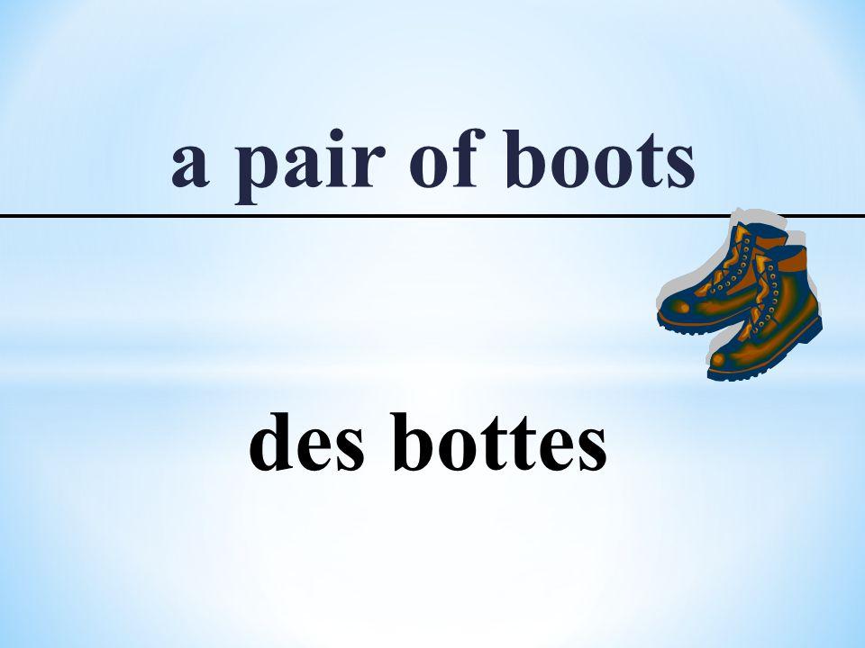 a pair of boots des bottes