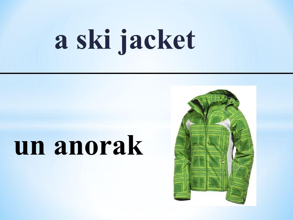 a ski jacket un anorak