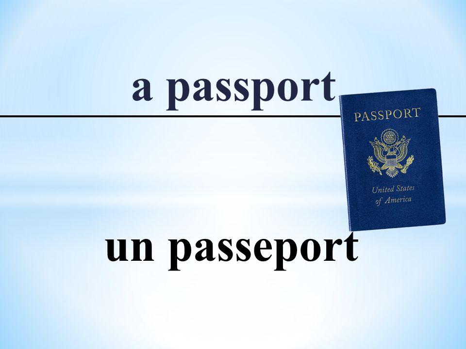 a passport un passeport