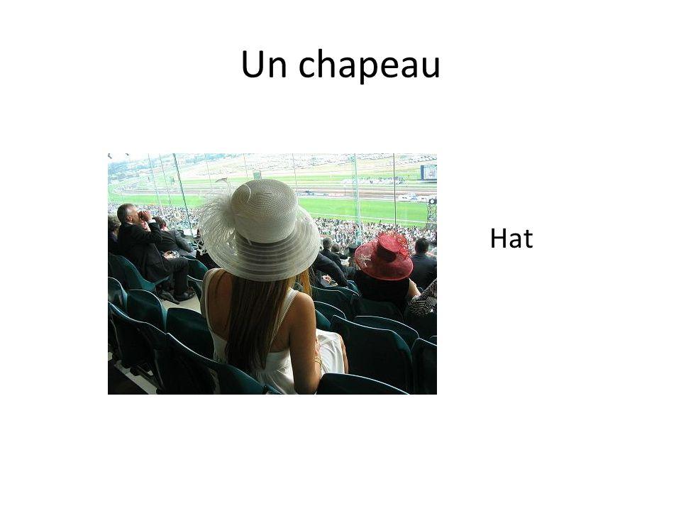 Un chapeau Hat