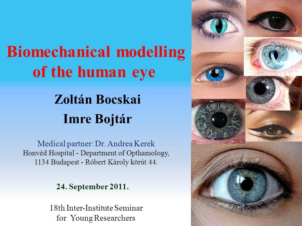 Biomechanical modelling of the human eye 24. September 2011.