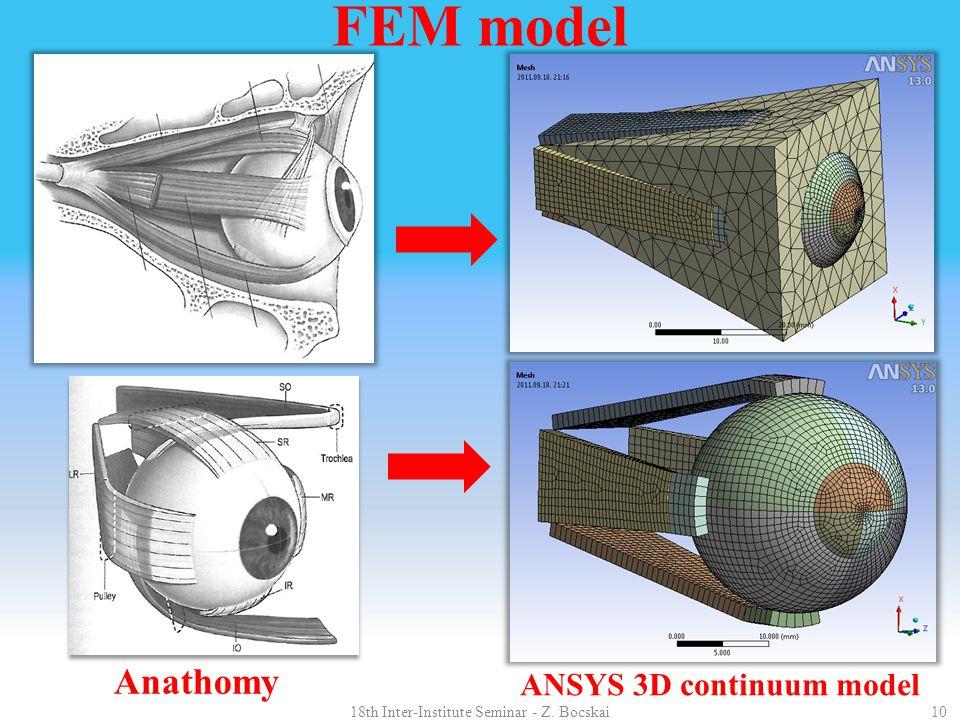 Anathomy ANSYS 3D continuum model 1018th Inter-Institute Seminar - Z. Bocskai FEM model