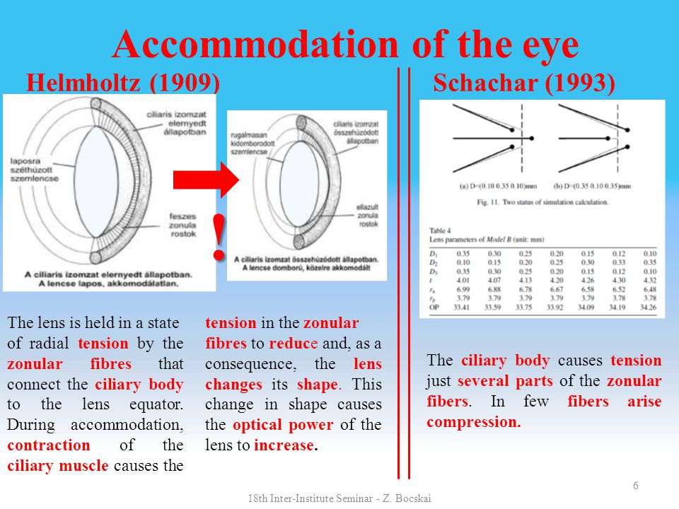 6 Accommodation of the eye Helmholtz (1909) Schachar (1993) The lens is held in a state of radial tension by the zonular fibres that connect the cilia