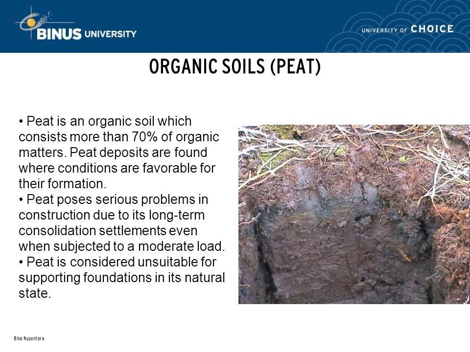 Bina Nusantara ORGANIC SOILS (PEAT) Peat is an organic soil which consists more than 70% of organic matters.