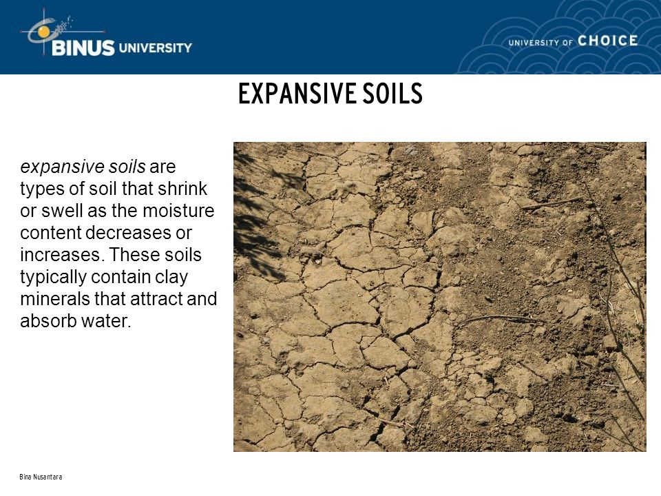 Bina Nusantara EXPANSIVE SOILS expansive soils are types of soil that shrink or swell as the moisture content decreases or increases.
